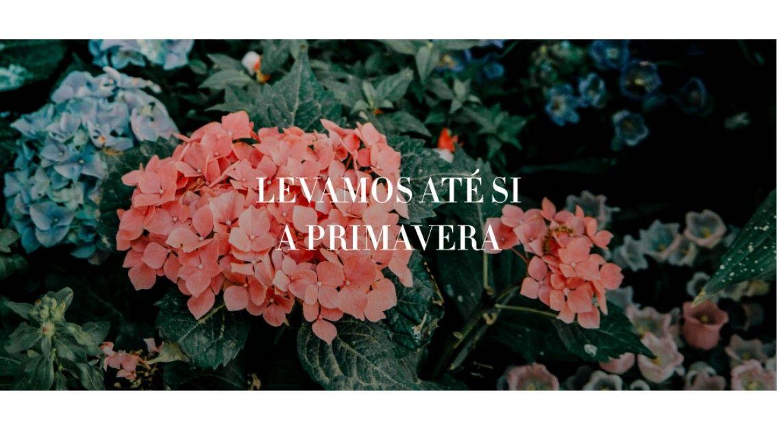 10 Perfumes que levam até si o melhor da Primavera